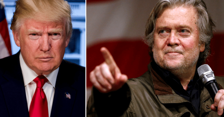 Donald Claims He's A 'Stable Genius.' Bannon's Announcement Just Proved It