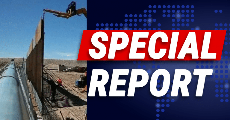 Men Get Stuck Climbing Trump's Border Wall – Images Show It Didn't End Well For Them